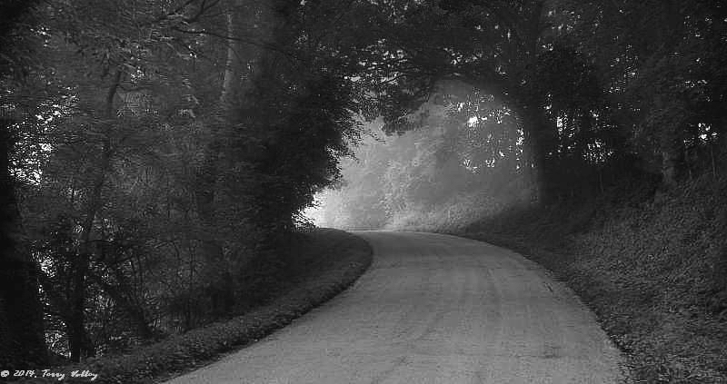 CURVING ROAD WITH LIGHT B & W